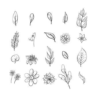 Verzameling van handgetekende bloemen