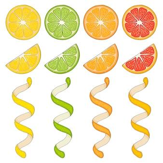 Verzameling van handgetekende elementen, citroen, grapefruit, sinaasappel, limoen, schijfje en spiraal. objecten voor verpakkingen, advertenties. geïsoleerd beeld.