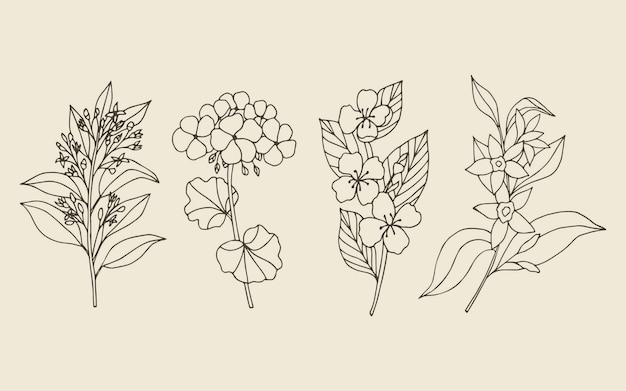 Verzameling van handgetekende etherische olieplanten