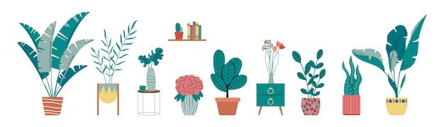 Verzameling van indoor, tropische huisplanten, cactus in potten. woon decoratieve en bladverliezende planten in een scandinavische handgetekende vlakke stijl.