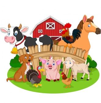 Verzameling van landbouwhuisdieren cartoon