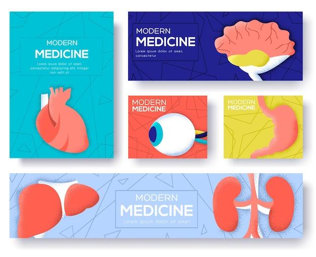Verzameling van menselijke organen flyer