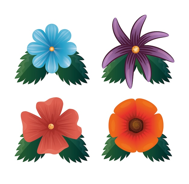 Verzameling van mooie bloemen