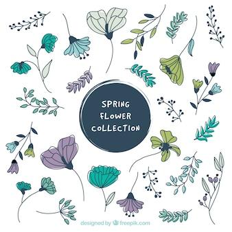 Verzameling van mooie handgetekende uitstekende bloemen
