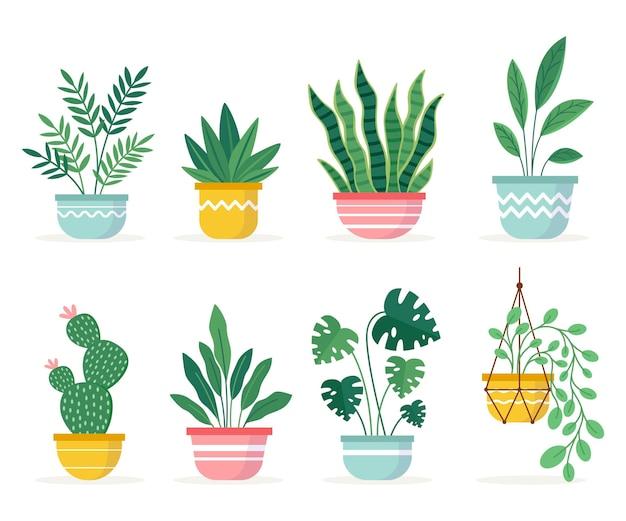 Verzameling van mooie kamerplanten in potten