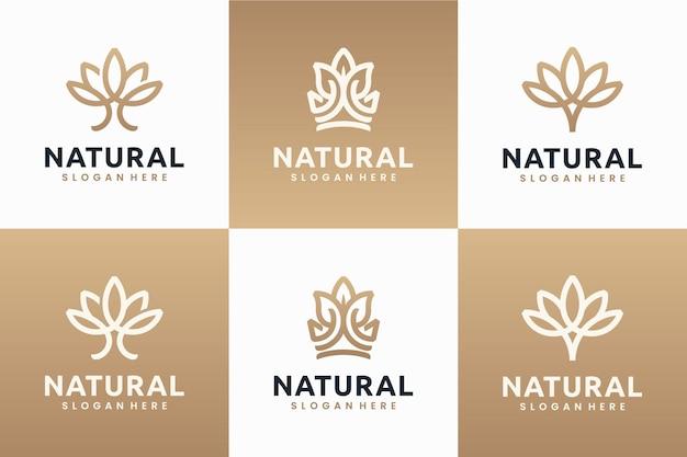 Verzameling van natuurlijke bloemen, lijntekeningen, logo-ontwerpinspiratie