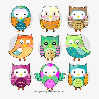 Verzameling van negen kleurrijke uilen