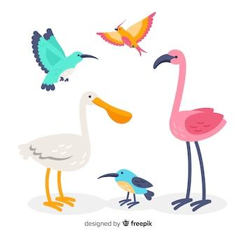 Verzameling van platte exotische vogels