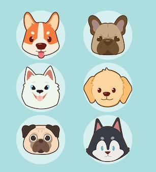Verzameling van schattig gezicht hond set.