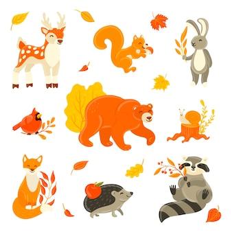 Verzameling van schattige dieren in het bos