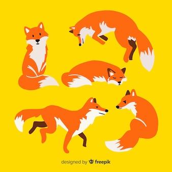 Verzameling van schattige kleine vossen