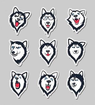 Verzameling van siberische husky stickers