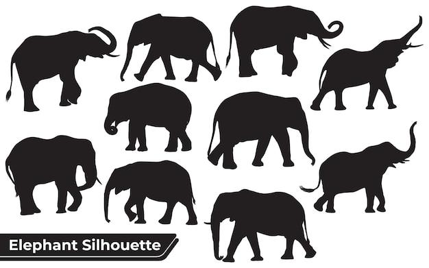 Verzameling van silhouetten van dierenolifant in verschillende posities