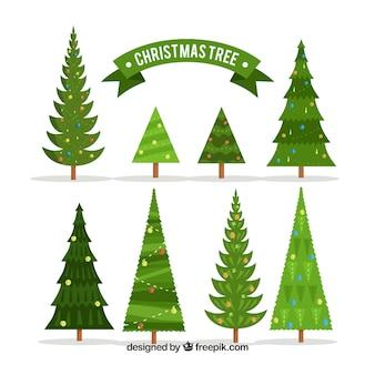 Verzameling van verschillende soorten kerstbomen
