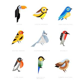 Verzameling van vogels, lilac breasted roller, goudvink, red-bellied pitta, koolmees, ijsvogel, noordelijke kardinaal, bijeneter, mus, prachtige fee illustraties