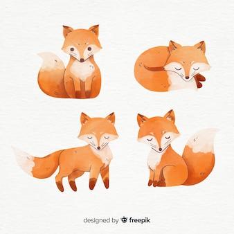 Verzameling van vossen aquarel stijl