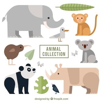 Verzameling van wilde dieren met plat ontwerp