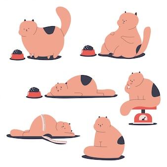 Vet en obesitas katten stripfiguren set geïsoleerd op een witte achtergrond.