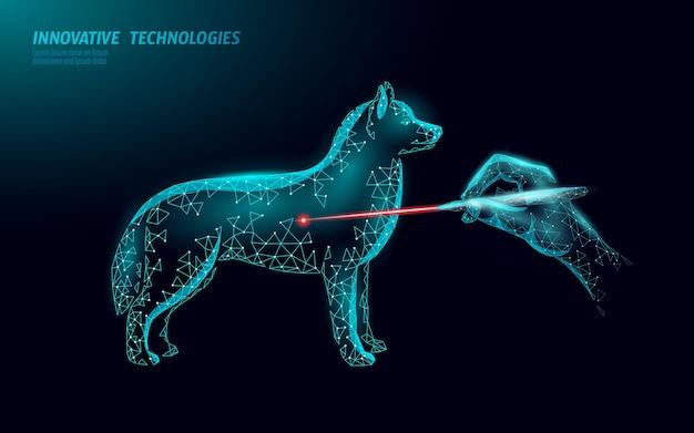 Veterinaire kliniek hond huisdier operatie operatie