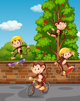 Vier apen die op straat spelen