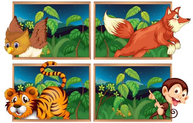 Vier bostaferelen met wilde dieren
