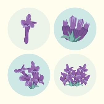 Vier lavendelbloemen