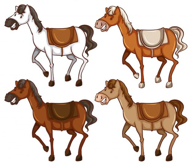 Vier paarden