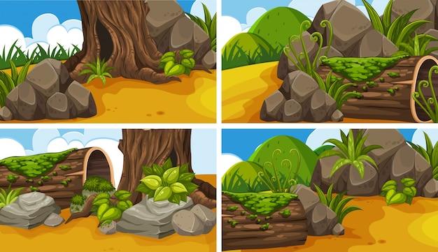 Vier scènes met bossen in het park
