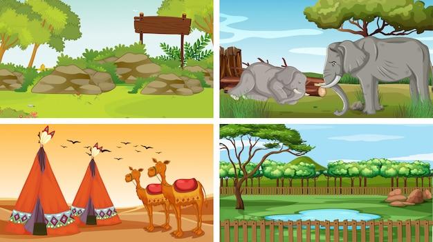 Vier scènes met dieren in het park