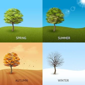 Vier seizoenenconcept met bomen op hemelachtergrond die wordt geplaatst