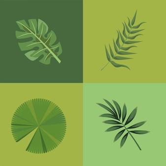 Vier tropische bladeren