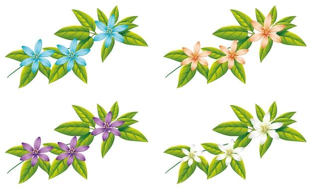 Vier verschillende kleuren bloemen op groene bladeren