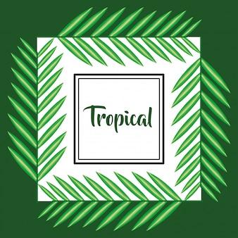 Vierkant frame met tropische bladeren