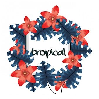 Vierkant frame met tropische bloemen en bladeren