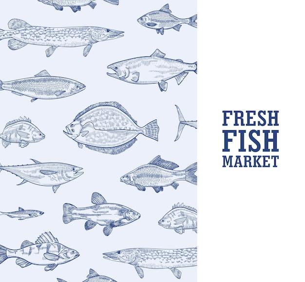 Vierkante zwart-wit sjabloon voor spandoek met vissen die in zee leven