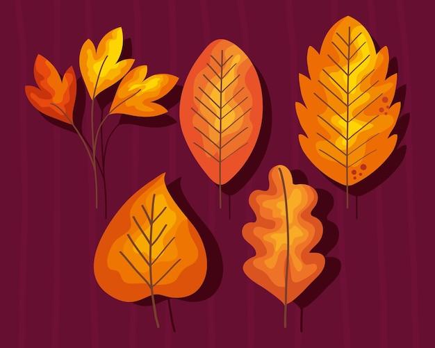 Vijf herfstbladeren
