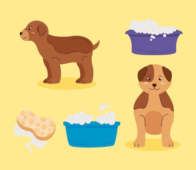 Vijf wassen huisdieren instellen pictogrammen