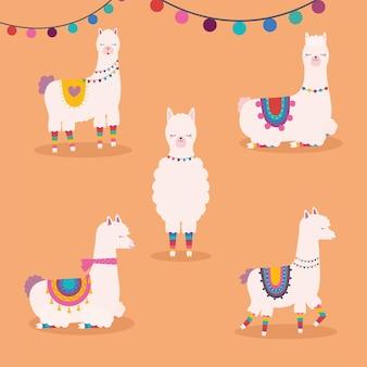 Vijf zoete lama's