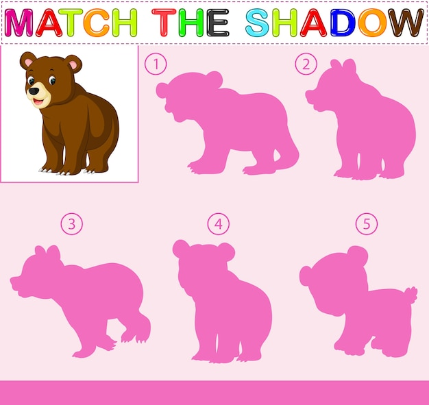 Vind de correcte schaduw van de beer
