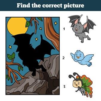 Vind de juiste afbeelding door schaduw, educatief spel voor kinderen. vampiervleermuis en achtergrond