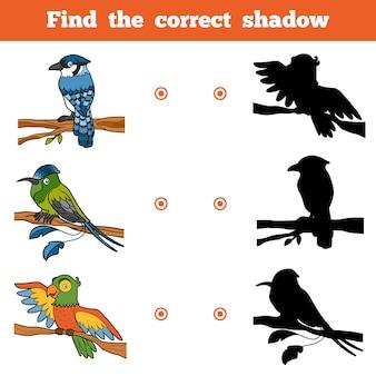Vind de juiste schaduw, onderwijsspel voor kinderen. vector set vogels