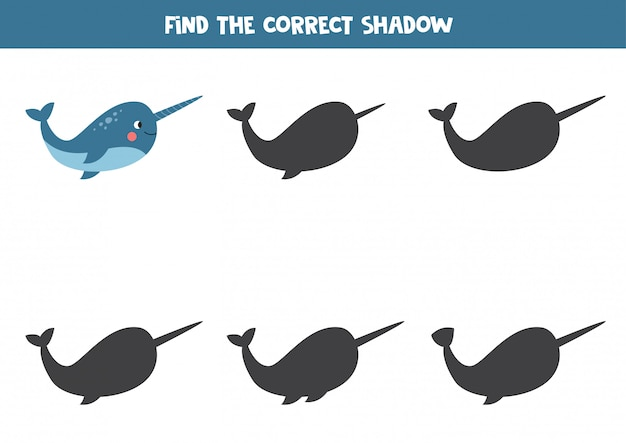 Vind de juiste schaduw van cartoon narwal.