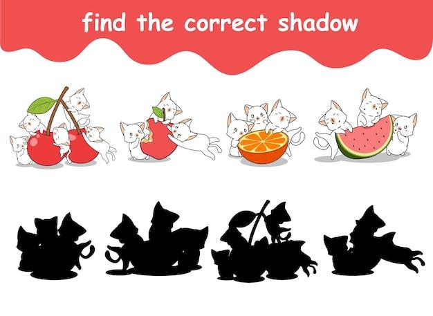 Vind de juiste schaduw van katten en fruit
