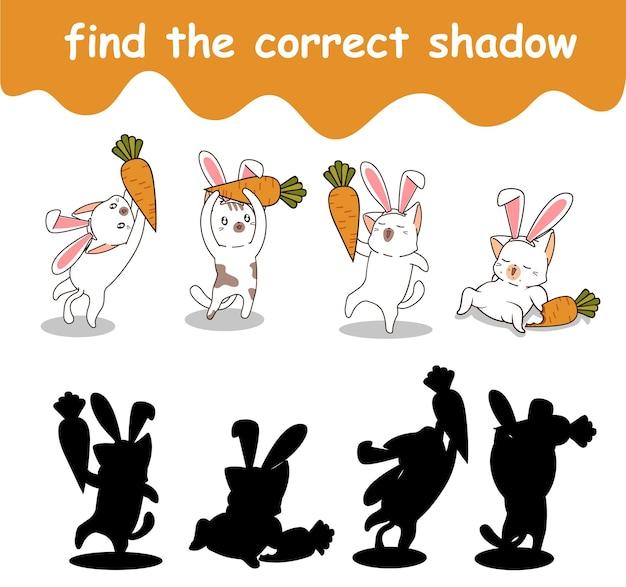 Vind de juiste schaduw van konijnenkat en wortel