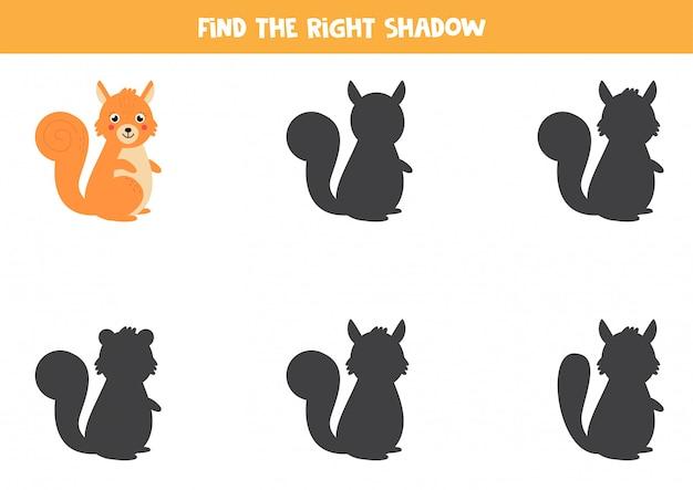 Vind de juiste schaduw van schattige cartoon eekhoorn. werkblad voor kinderen.