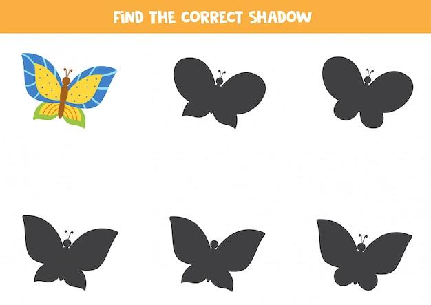 Vind de juiste schaduw van schattige heldere vlinder.