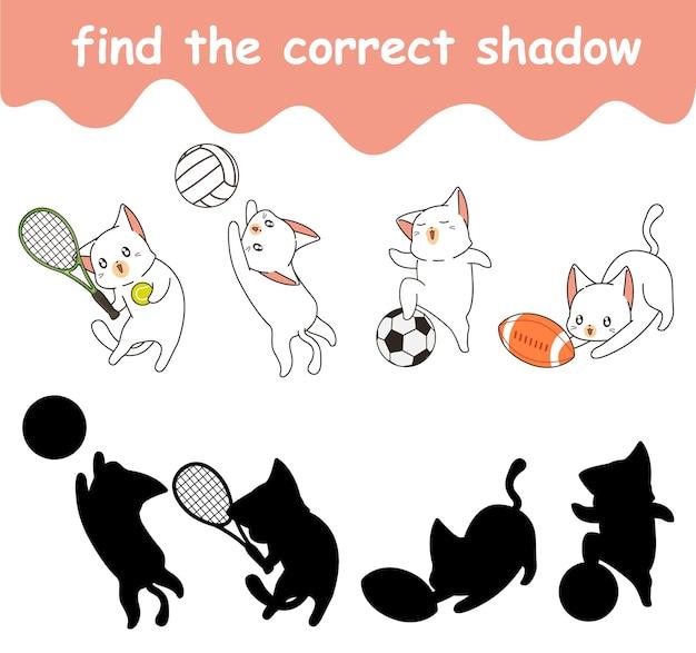 Vind de juiste schaduw van schattige katten die aan het sporten zijn