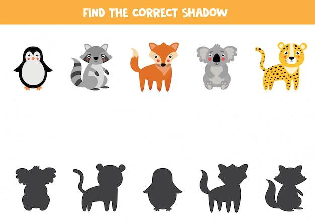 Vind de juiste schaduw van schattige tekenfilm dieren.