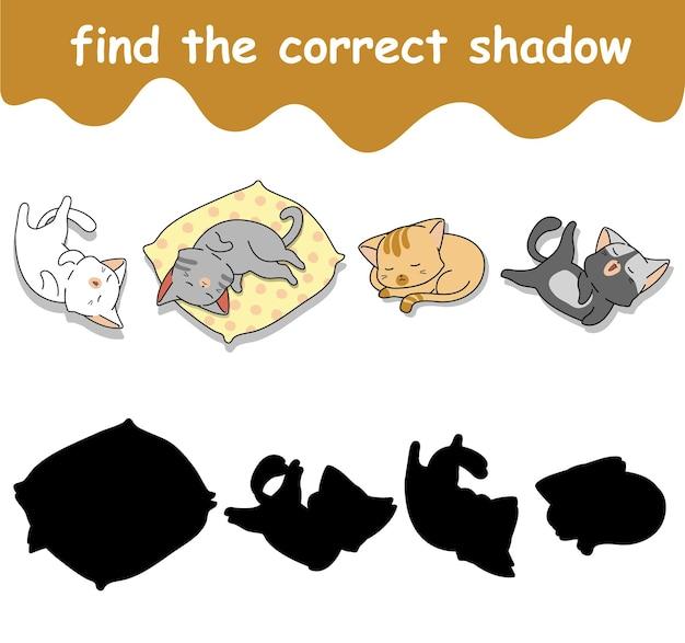 Vind de juiste schaduw van slapende kattencartoon