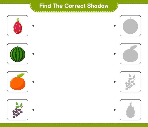 Vind de juiste schaduw. zoek en match de juiste schaduw van fruit. educatief kinderspel, afdrukbaar werkblad